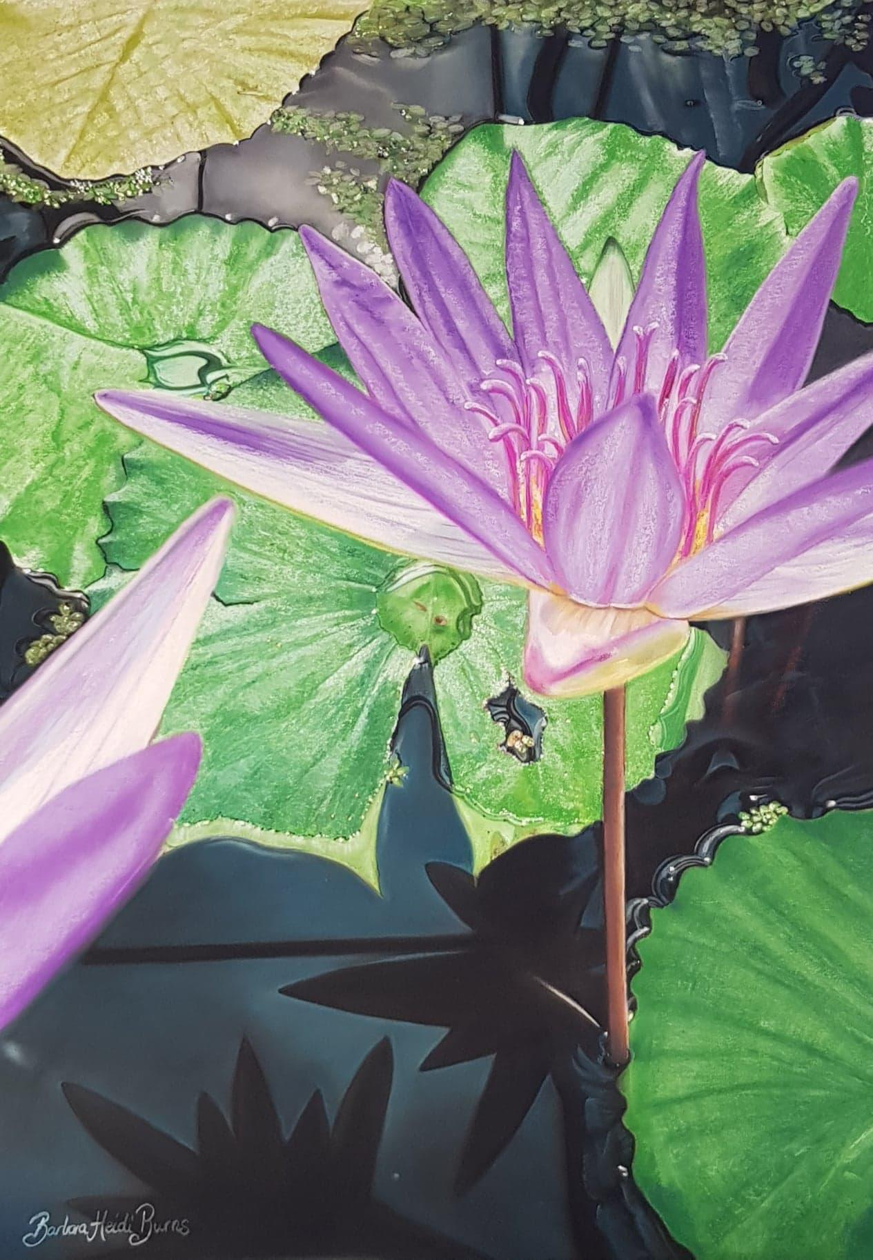 Birth Of The Blue Lotus By Barbara Heidi Burns For Sale Buy Art Work