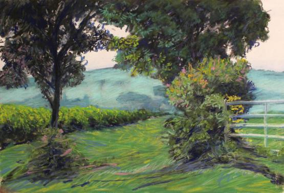 EDGE OF THE VINES, FROSTY MORNING POMMARD