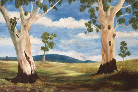 Two Old Gum Trees