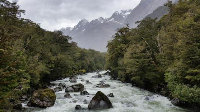 Milford Sounds River