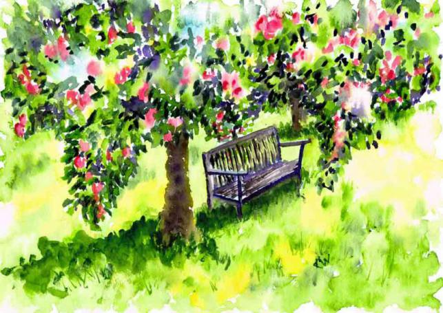 Orchard Bench (Places To Sit 6)