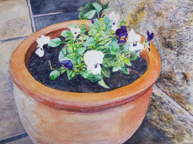 Terracotta Pot With Pansies