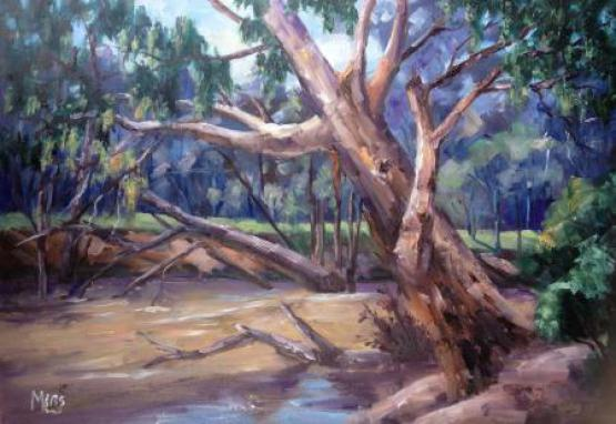 After The Flood - Ovens River