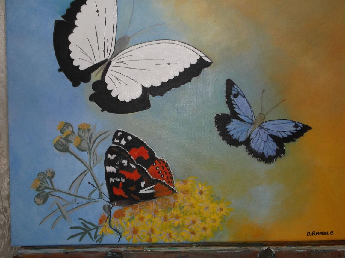 f31fa7342a Butterflies by Dorothy Randle - Search Results on