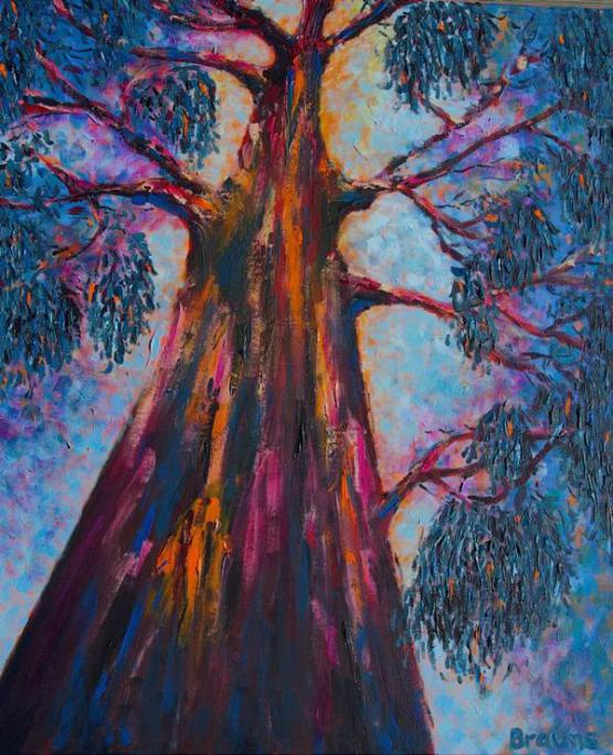 The Happy Murry River Gum - Bluey No Two.