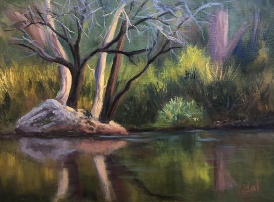 Reflections At Mt Surprise, Queensland - Oil On Loose Linen